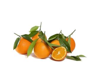 Naranjas navel campo, Kg.